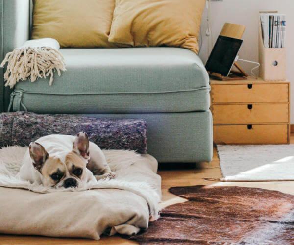 Top Reasons Home Generators Are a Good Idea